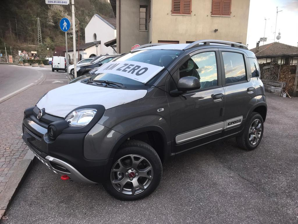Immagine Fiat Panda Cross 0.9 TwinAir Turbo S&S 4x4